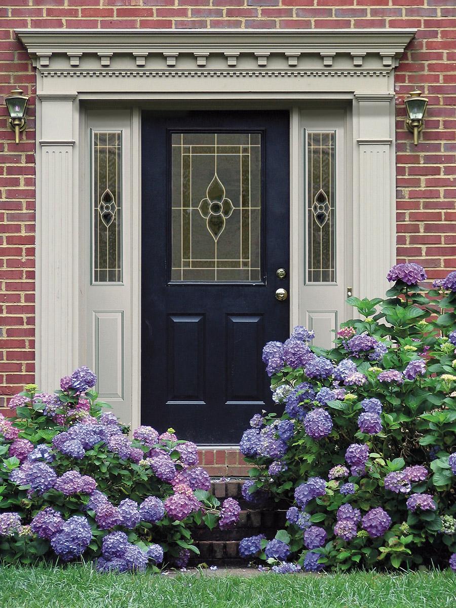 Dynasty-Glass-Door-Insert---The-Glass-Door-Store-(1)